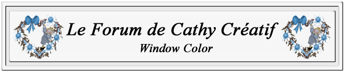Cathy Créatif Window Color